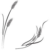 Wheat ears frame, border or corner element. Vector black and white illustration of a few ripe wheat ears. Can be used as frame, corner or border design element Royalty Free Stock Photo