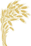 Wheat ears frame, border or corner element. Vector illustration of a few ripe wheat ears. Can be used as frame, corner or border element Royalty Free Stock Image