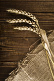 Wheat ears and grains Stock Photos