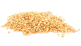Wheat ears hill Royalty Free Stock Photo