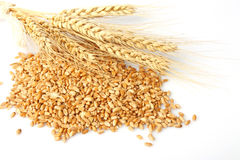 Wheat ears hill Royalty Free Stock Images