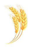 Wheat ears icon Royalty Free Stock Photo