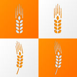 Wheat ears icons eps10 Stock Photos