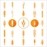 Wheat Ears Icons and Logo Set. Royalty Free Stock Image