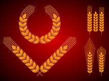 Wheat Ears Icons and Logo Set. Royalty Free Stock Photography