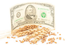 Wheat ears and money Stock Photos