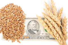 Wheat ears and money Royalty Free Stock Image