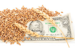 Wheat ears and money Stock Photography