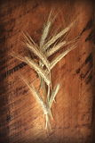Wheat ears. On an old wooden background Stock Photography