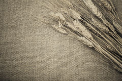 Wheat Ears over Burlap Royalty Free Stock Photography