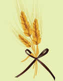 Wheat ears pattern design Royalty Free Stock Photography