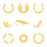 Wheat ears or rice icons set. Agricultural wheat spikelets symbols isolated on white background. stock illustration