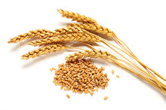 Wheat ears and seed Royalty Free Stock Photo