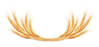 Wheat ears with space for text. EPS 10 Royalty Free Stock Photo