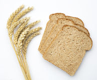 Wheat ears (triticum) and brown bread  Royalty Free Stock Image
