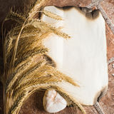 Wheat ears on vintage background Royalty Free Stock Images
