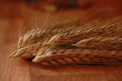 Wheat ears on wood Stock Image