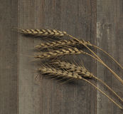 Wheat Ears on the Wood Stock Photo