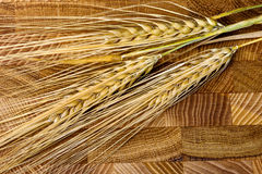 Wheat Ears on the Wooden Table. Sheaf of Wheat over Wood Backgro Stock Photo