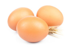 Wheat and egg Royalty Free Stock Image