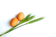 Wheat and eggs Royalty Free Stock Images