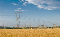 Wheat and electricity Royalty Free Stock Images