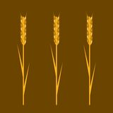 Wheat Elements Royalty Free Stock Photos