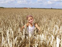 In wheat field. Young girl in wheat field Royalty Free Stock Image