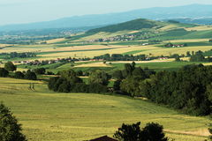 Wheat field in Auvergne. Wheat field in summer, Auvergne region of France royalty free stock photography