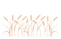 Wheat field. Silhouettes of rye. Wheat field background. Cereals icon set with rice, wheat, corn, oats, rye, barley. Ears of wheat bread symbols. Organic Royalty Free Stock Photo