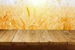 Wheat field background and empty wooden deck table. Wheat field sunny background and empty wooden deck table stock photography