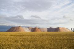 Wheat field on the background of mountains potassium salt Royalty Free Stock Image