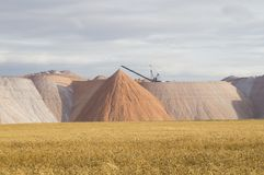 Wheat field on the background of mountains potassium salt Stock Images