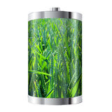 Wheat Field Battery Stock Image