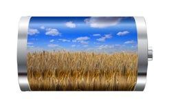Wheat Field Battery Stock Photography