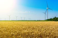 Wheat field and eco power, wind turbines Royalty Free Stock Photos