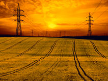 Wheat field with electricity pylon at sunset. Orange sky Royalty Free Stock Photo