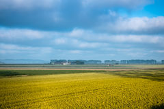 Wheat field and farm in autumn, France Royalty Free Stock Photography
