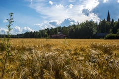Wheat Field and Farm Stock Photos