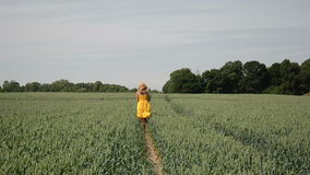 Wheat field girl walk Royalty Free Stock Image