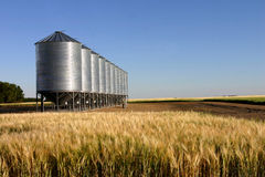 Wheat field & granaries Royalty Free Stock Photography