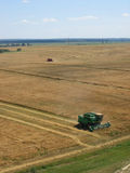 Wheat field harvest Royalty Free Stock Photo