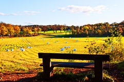 Wheat field after a harvest at the fall. Oslo Norway Stock Images