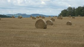 Wheat field after harvest with straw bales. Row of straw bales on the field. Agricultural landscape. stock footage