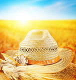 Wheat field and the hat of a farmer Royalty Free Stock Photos
