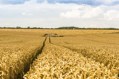 Wheat Field and Hay Barn Royalty Free Stock Images