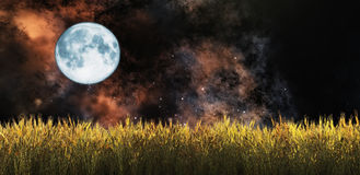 Wheat field. Illustration of the moon and a wheat field Stock Photography
