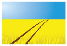 Wheat field. Illustration with tractor tracks and blue sky Stock Photo