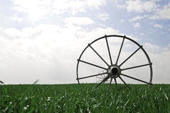 Wheat field with irrigation system. Bright sky, vivid color Stock Photos