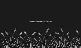 Wheat field line border on black background. Vector Stock Photography